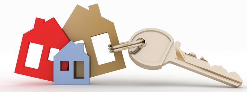 fomento lanza una web informativa en materia de alquiler de vivienda